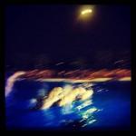 instagramalert1