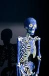 mr.bones_Athens12