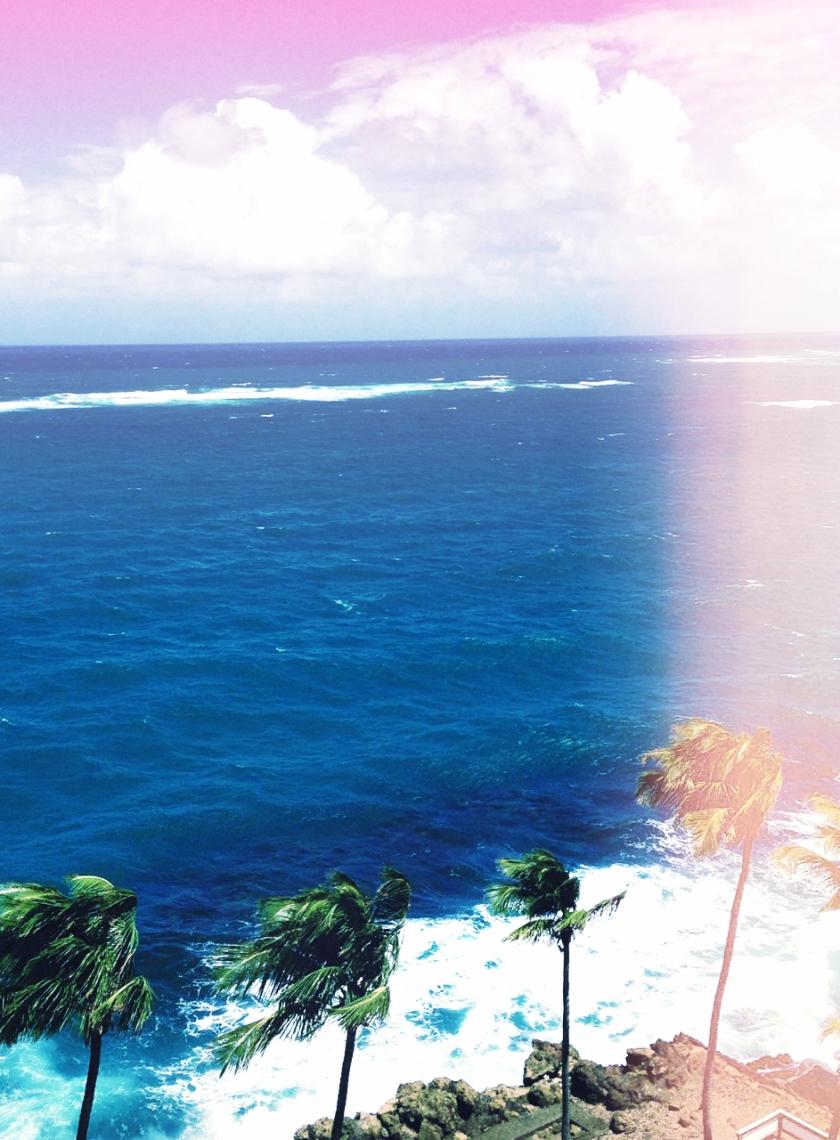surfing_delight6