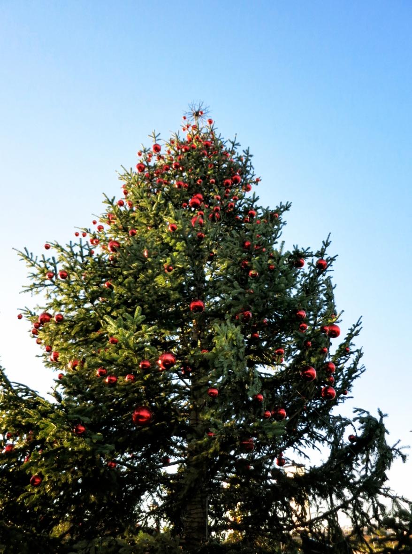 stylentonic Xmas tree