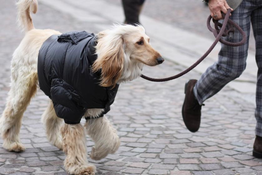 street-style-fall-winter-2014-pitti-uomo-13