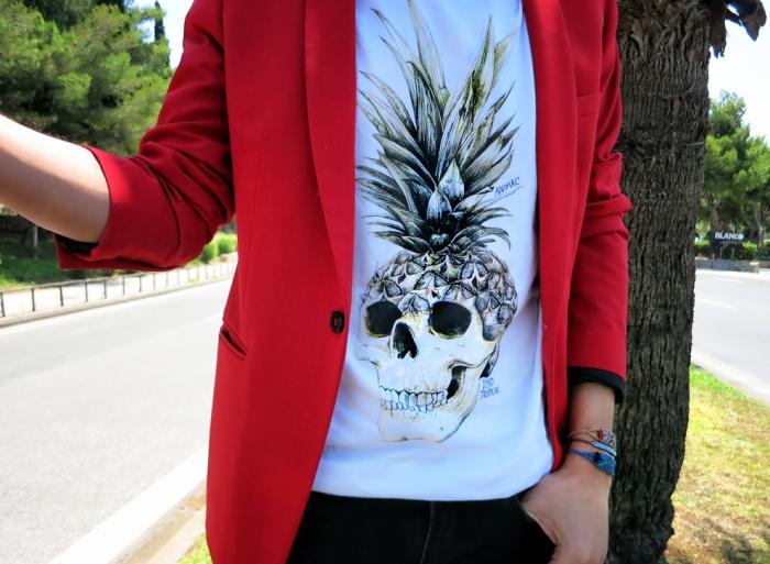 Animal clothing
