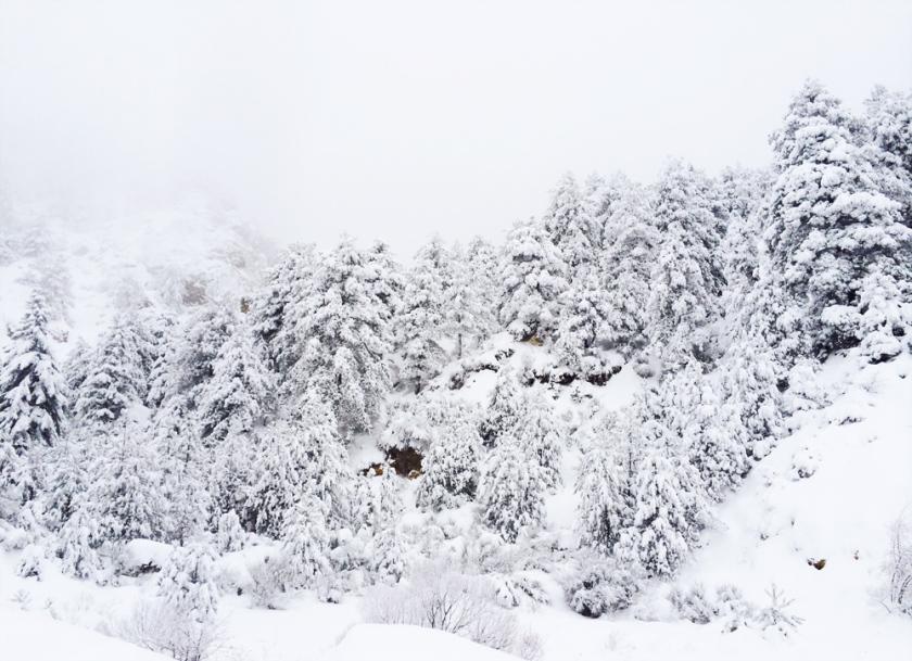 Greece_snow