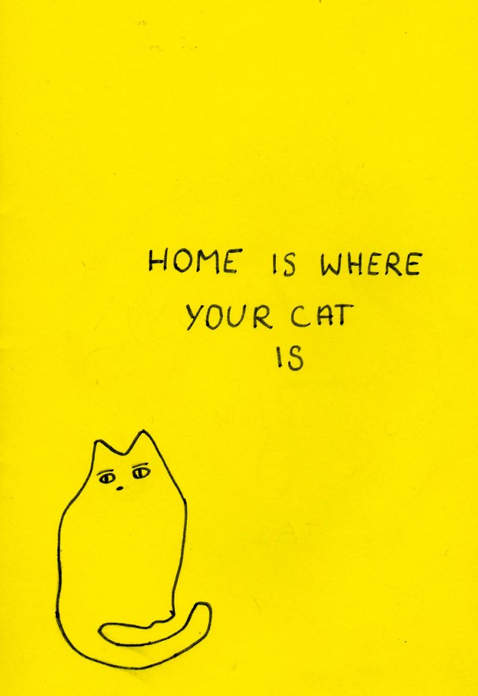cat_home