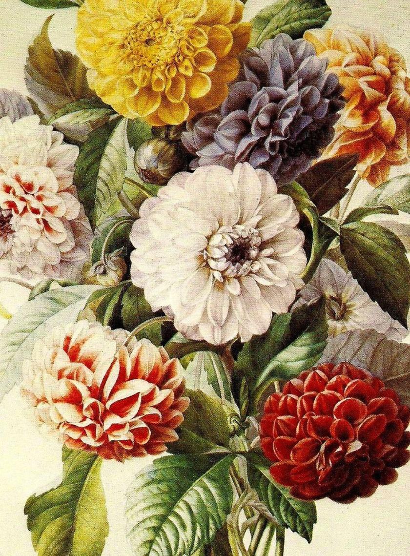 botanical_print