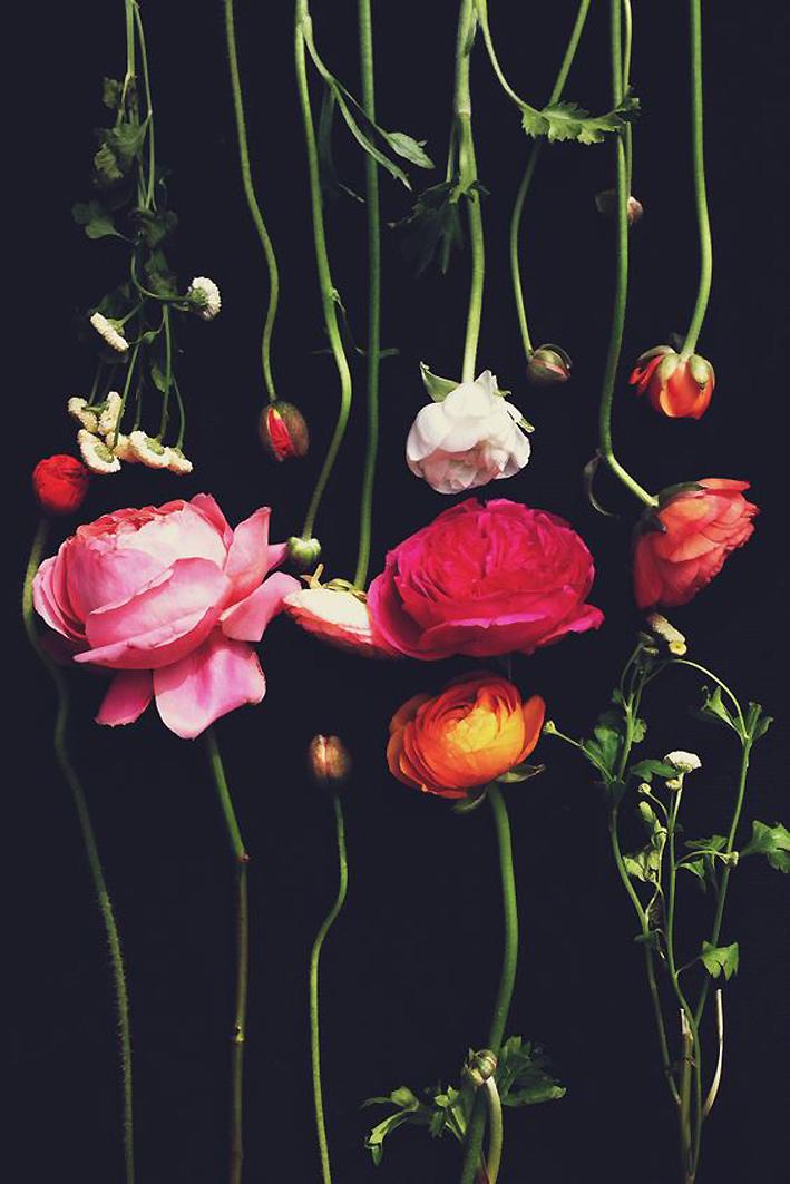 flowers-art