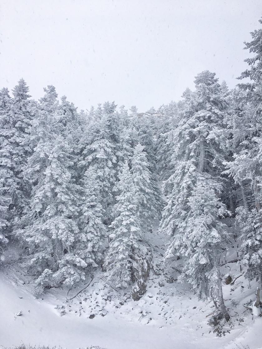 parnassos_snow